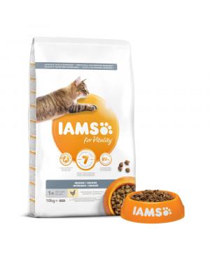 IAMS Cat Adult Indoor с пилешко -суха храна за котки, живеещи в дома ви 10кг.