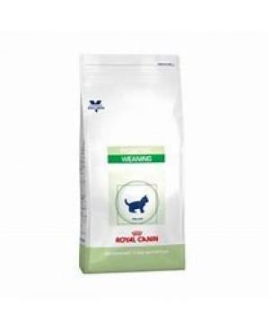 Суха храна за котки - Royal Canin VCN - Pediatric Weaning Cat - за отглеждане на котенца след 4 седмици и за бременни и кърмещи котки - 2 кг - Котки
