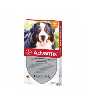 Препарат Спот Он за  външно обезпаразитяване при кучета -Advantix 40-60 кг.,  1 пипета