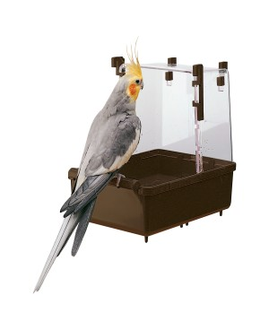 ВАНА ЗА ПАПАГАЛИ - Птици