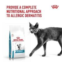 Лечебни храни за котки